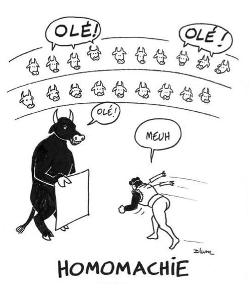 Homomachie