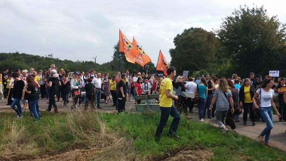 2 Des militants de la cause animale manifestent à Mézilles pour demander la fermeture du CEDS