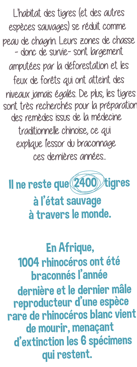 post 24 sept- IFAW 10